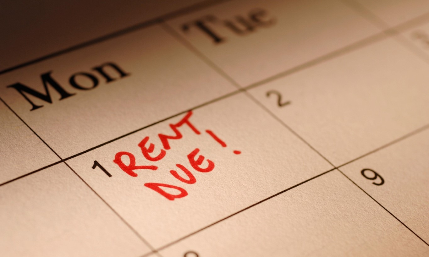 If You Are Someone Who Has Been Trying To Build Their Credit History, You  May Have Wondered Whether Paying Your Rent On Time Could Have A Positive  Impact On